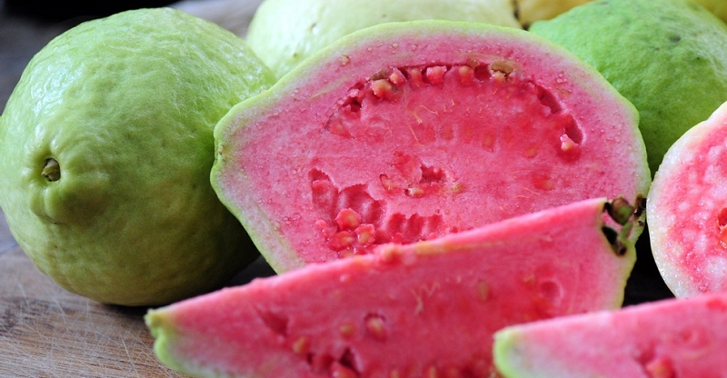 guava fruit image